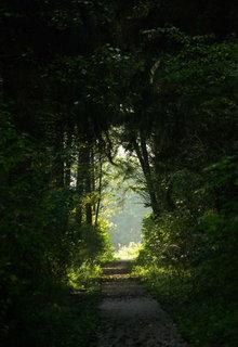 FOTKA - svetlo na konci cesty