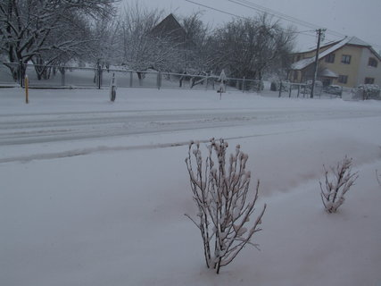 FOTKA - ,dnešní počasí - mazec :-(