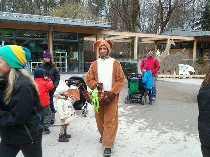 FOTKA - Zoo Mníchov