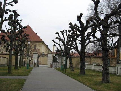 FOTKA - Královská zahrada v dubnu 6