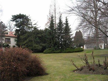 FOTKA - Královská zahrada v dubnu 12
