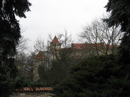 FOTKA - Královská zahrada v dubnu 69