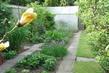 moje zahrada,.,.