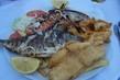 Řecké ryby