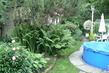 kapradí si na zahradu raději nedávejte