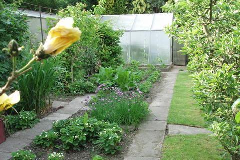 FOTKA - moje zahrada,.,.