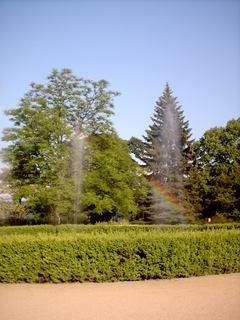 FOTKA - park u skleniku pod zamkem
