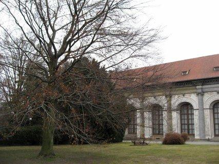 FOTKA - Královská zahrada 84