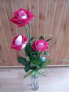 FOTKA - ruže od švagrové,.