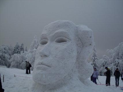 FOTKA - Ledová socha