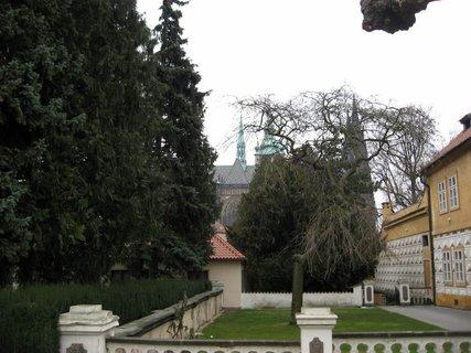 FOTKA - V Královské  zahradě 1
