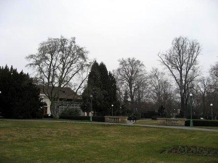 FOTKA - V Královské  zahradě 4
