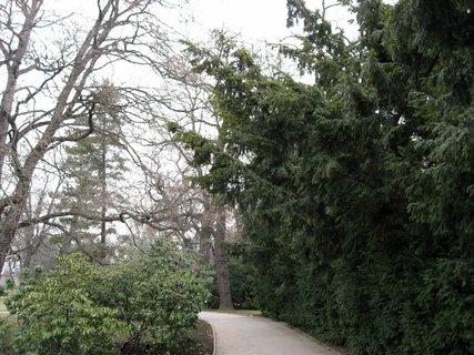 FOTKA - V Královské  zahradě 16