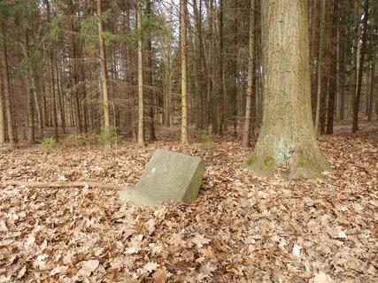 FOTKA - Zapomenutý pomníček v lese u silnice nad obcí Slapy