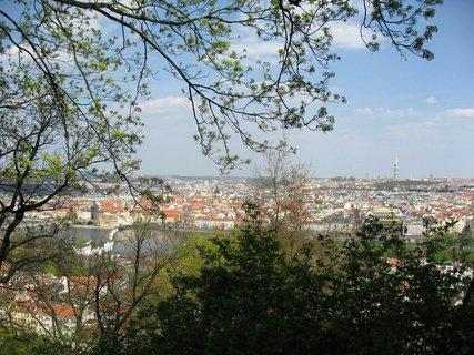 FOTKA - Jaro na Petříně 19