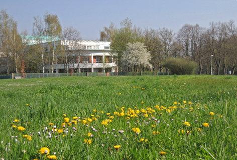 FOTKA - jaro ve městě,