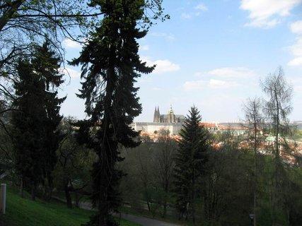 FOTKA - Jarní Petřín 13