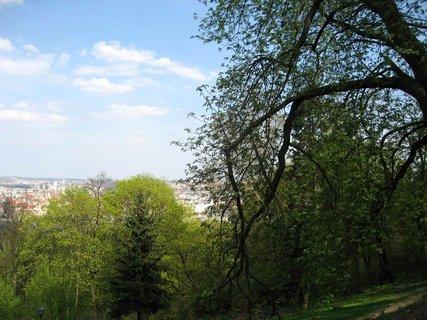 FOTKA - Jarní Petřín 14
