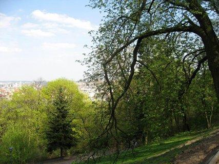 FOTKA - Jarní Petřín 16