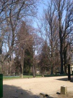 FOTKA - v parku*
