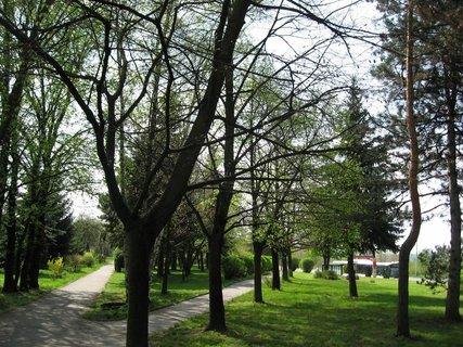FOTKA - Jarní procházka 1