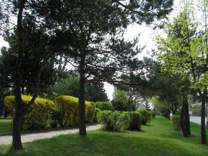 FOTKA - Jarní procházka 2
