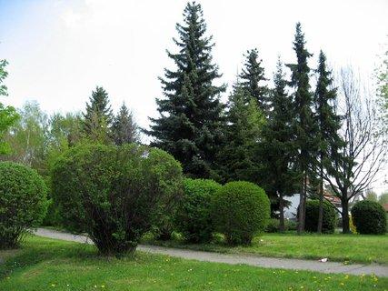 FOTKA - Jarní procházka 3