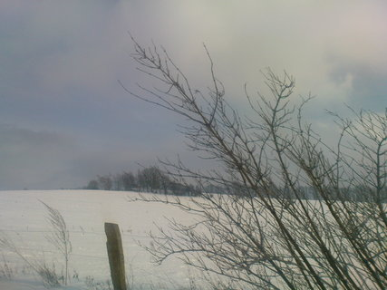 FOTKA - v zim�