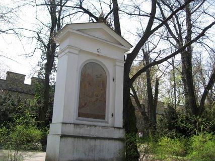 FOTKA - Jarní Petřín 29