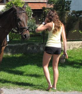 FOTKA - Koník