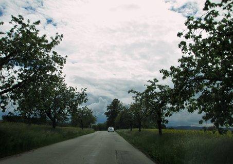 FOTKA - cestou z práce 12