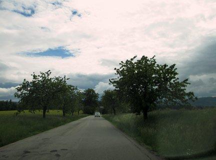 FOTKA - cestou z práce 13