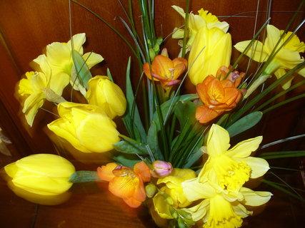 FOTKA - jarní kvítí