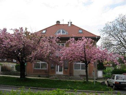 FOTKA - Letňany  v květnu 11