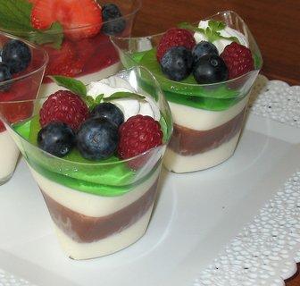 FOTKA - Panna Cotta - čokoládový dezert s ovocem