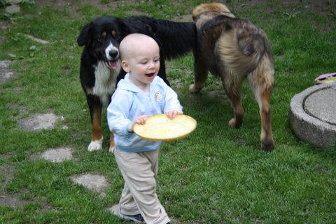 FOTKA - odnesu si talíř sám