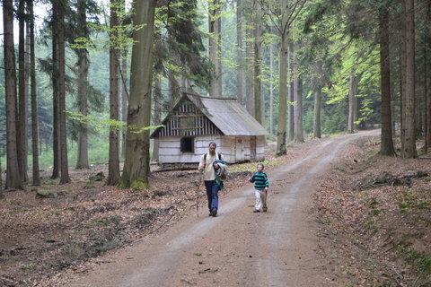 FOTKA - Lesíkem