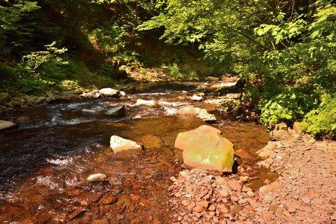 FOTKA - prima místo u řeky