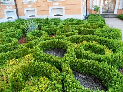FOTKA - Buxusová zámecká zahrada