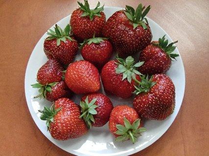 FOTKA - jahody zo záhrady
