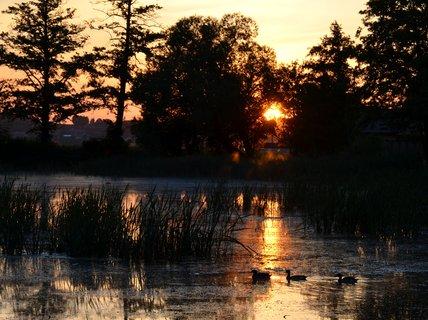 FOTKA - Ráno raníčko  když kačenka vstala sluníčko pěkně přivítala
