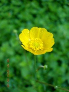 FOTKA - příroda je krásná - 10