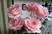 růže 61