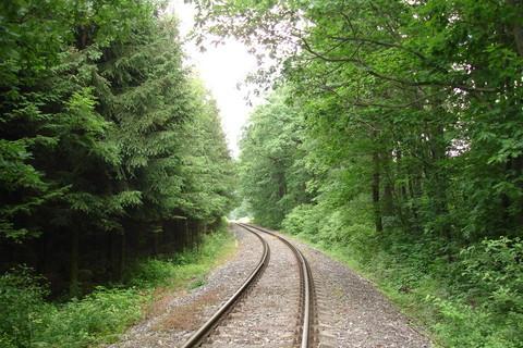 FOTKA - Železniční koleje u Kuchaře