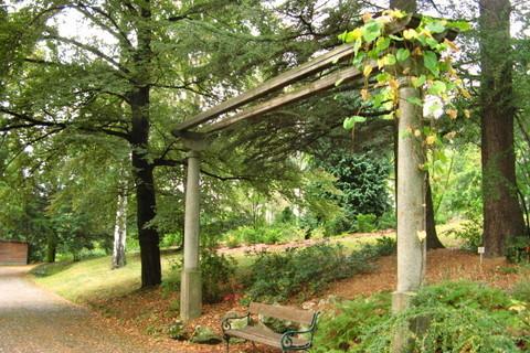 FOTKA -  Arboretum u Opavy