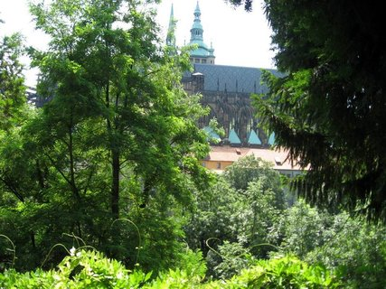 FOTKA - Léto v Královské zahradě 8