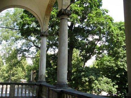 FOTKA - Léto v Královské zahradě 25