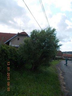 FOTKA - v červenci - 19 - na procházce co se mi líbilo