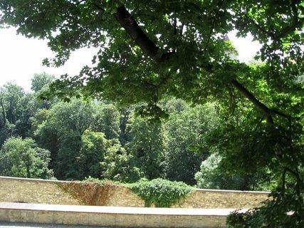 FOTKA - Léto v Královské zahradě 33