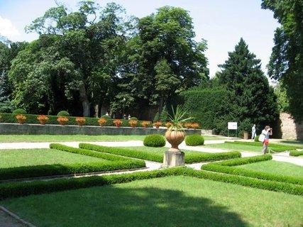 FOTKA - Léto v Královské zahradě 35